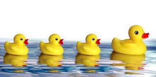 rubber ducks free clip free clip on clipart