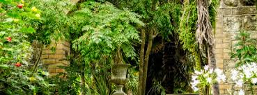 Botanic Gardens Uk Top 5 Botanic Gardens In The Uk Culturecalling