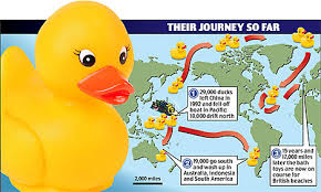 thousands of rubber ducks to land on british shores after 15 year
