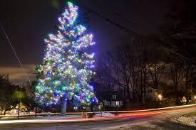 companies that put up christmas lights around the corners woodmoor christmas tree