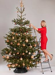 what your tree decorations reveal about you daily mail