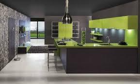 cuisine moderne en u cuisine grise et verte en u