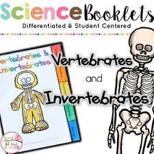 vertebrates and invertebrates animal classification tabbed booklet