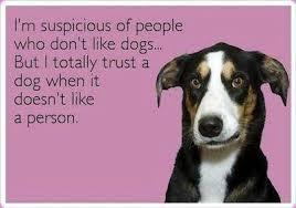 Trust Memes - funny ecards trust the dog funny memes