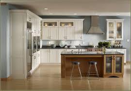 Kitchen Cabinets Brands 100 Top Kitchen Cabinet Brands Kitchen How Much Do Kitchen