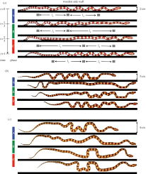 friction enhancement in concertina locomotion of snakes journal
