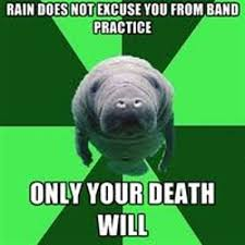 seacow marching band meme lol pinterest marching band memes