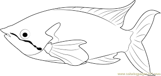 rainbow fish coloring free fish coloring pages