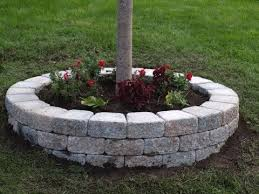 Landscaping Ideas Around Trees Building A Retaining Wall Around A Tree How To Could Do This