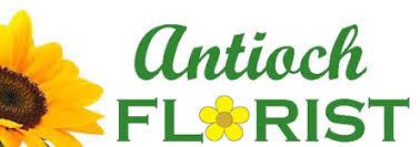 Flower Shops In Valencia Ca - antioch florists flowers in antioch ca antioch florist