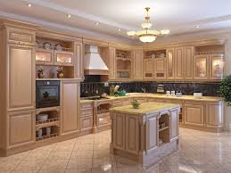 Kitchen Cabinet Types Pleasant Idea  Of Wood Cabinets Kitchen - Kitchen cabinets wood types