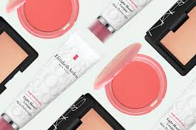 best makeup kits for makeup artists best multitasking products makeup artists recommend cheek color