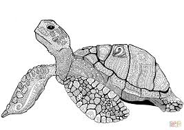zentangle turtle coloring page free printable coloring pages