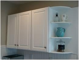 Kitchen Corner Shelf by Corner Kitchen Cabinet Shelf Kitchen Decoration