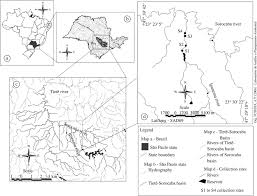 Parana River Map Fish Assemblage Structure Of The Ipanema River A Small Lotic