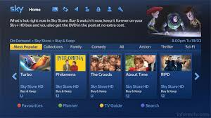 sky store offers movie downloads plus a disc in the mail informitv