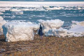 ice chunks taller than people washed up on the shores of cape cod