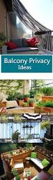 Small Patio Privacy Ideas by Best 25 Balcony Privacy Ideas On Pinterest Balcony Curtains