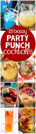 19 party punch cocktail recipes cocktail recipes recipes and