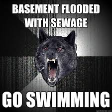 Flooded Basement Meme - basement flooded with sewage go swimming insanity wolf quickmeme