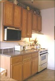 Kitchen Cabinet Microwave Shelf Interesting Kitchen Cabinet With Microwave Shelf And Kitchen