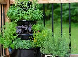 Patio Herb Garden Ideas Patio Herb Garden Objectifsolidarite2017 Org
