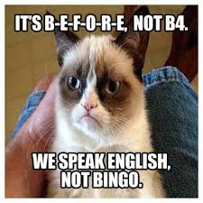 Grumpy Cat New Years Meme - garfield alf stupid people grumpy cat new year s resolutions