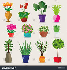 modern plant pots set colorful bright flowerpots house vector stock vector 505514329