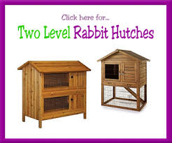 Rabbit Hutch For Multiple Rabbits Over 150 Great Outdoor Rabbit Hutch Designs Rabbit Playpen Styles