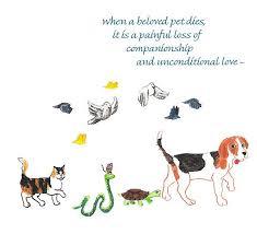 when a pet dies np632 when a beloved pet dies greetings catholic