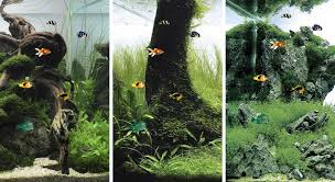 free wallpaper in android best aquarium and fish live wallpapers for android android authority
