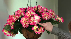 bethlehem lights battery operated hydrangea hanging basket on qvc