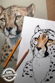 cheetah coloring pages print paterns cheetahs