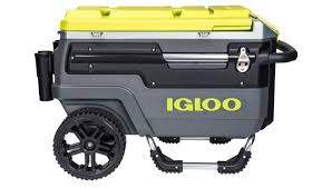 Coleman Stainless Steel Cooler Costco by Igloo Coolers Hard Coolers Cooler Bags Water Bottles U0026 Water Jugs