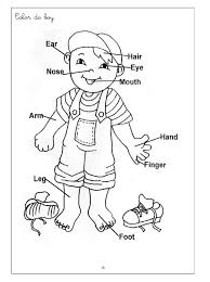 parts of the body coloring pages for preschool coloring page for