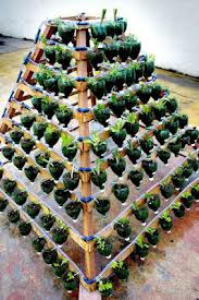 Bottle Garden Ideas Vertical Garden Pinterest Gardens Garden Ideas And Plants