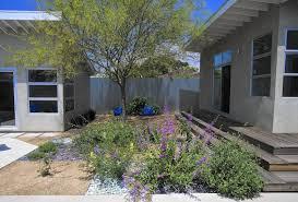 california native drought tolerant plants more california gardeners go native la times