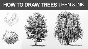 how to draw trees with pen and ink youtube