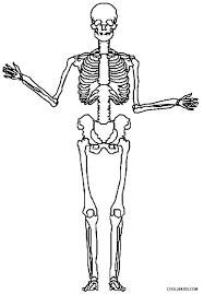 human body coloring page funycoloring