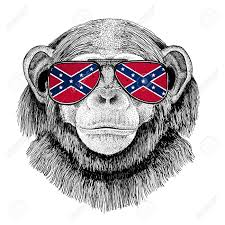 Flag Confederate States Of America Chimpanzee Monkey Wearing Glasses With National Flag Of The