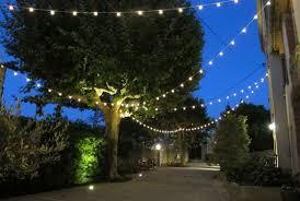 Fairy Light Tree by Garden Lighting Ideas Inspiration Lights4fun Co Uk