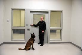 belgian shepherd louisiana people who u0027ve served time are being left out of voting 1 wwno