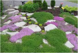 Landscape Ideas For Backyard Backyards Cool Grassless Backyard Landscaping Ideas Create Your