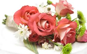 how to send flowers to someone flowers a gift for someone special tohfa xpress