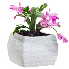 Small Flower Pot by Decoration Inspiring Ceramic Flowing Glaze Solid Gray Flower Pot