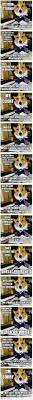 Corgi Lawyer Meme - dog lawyer most if not all of them a life of law pinterest