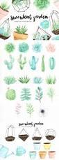 best 25 watercolor succulents ideas on pinterest watercolor
