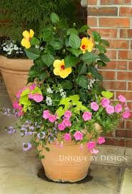 1092 best summer containers images on pinterest gardening pots
