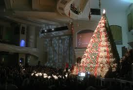 living christmas tree peeinn com