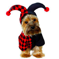 little devil halloween costume online get cheap devil dog costume aliexpress com alibaba group